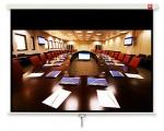 Ekran AVTEK Business 270x169 cm (16:10)