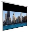 Ekran AVTEK Video PRO 230x172,5 cm (4:3)