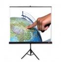 Ekran AVtek Tripod PRO 200x200 cm (1:1)