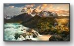 Monitor Sony FWD-100ZD9501